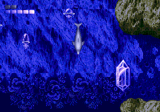 Ecco The Dolphin Crystal