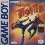 Raging Fighter Box