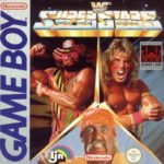 WWF Superstars Box