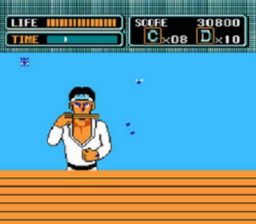 The Karate Kid Ice Breaking Bonus Stage Fly Catching